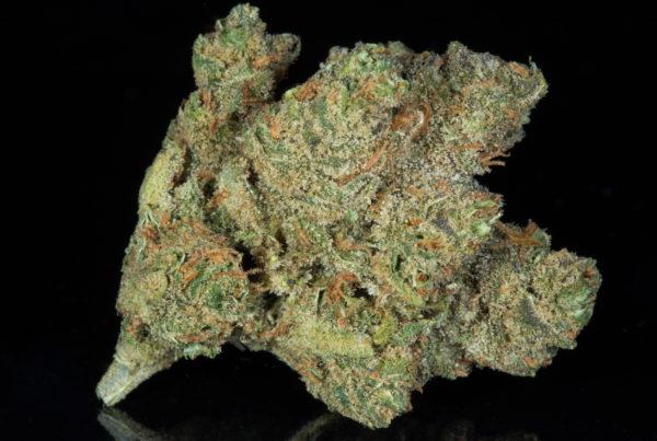 Strains - The Herbal Cure: Denver's Premier Cannabis Dispensary