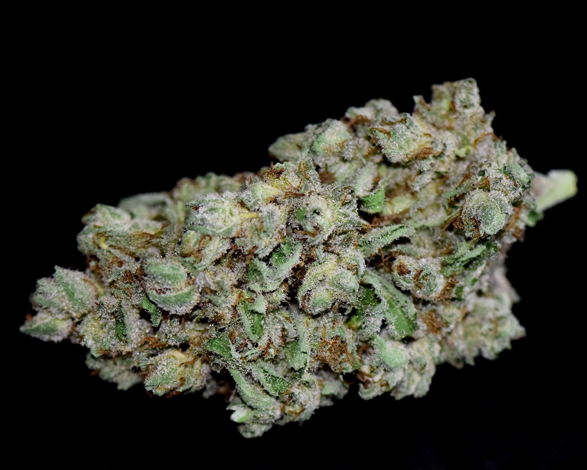 Lemon Sorbet - The Herbal Cure: Denver's Premier Cannabis