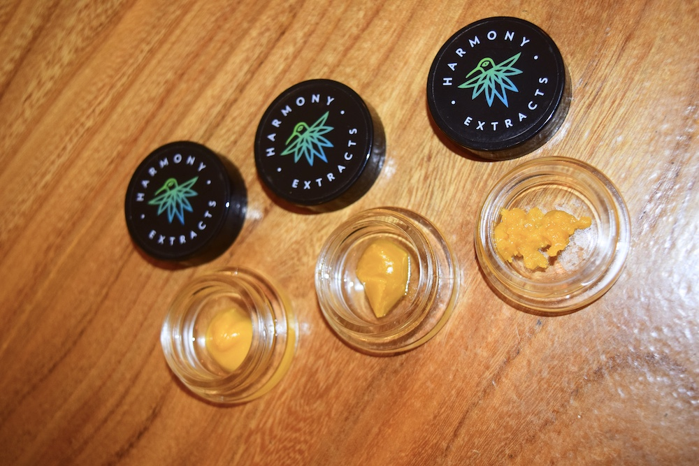 January Hash Drops at The Cure