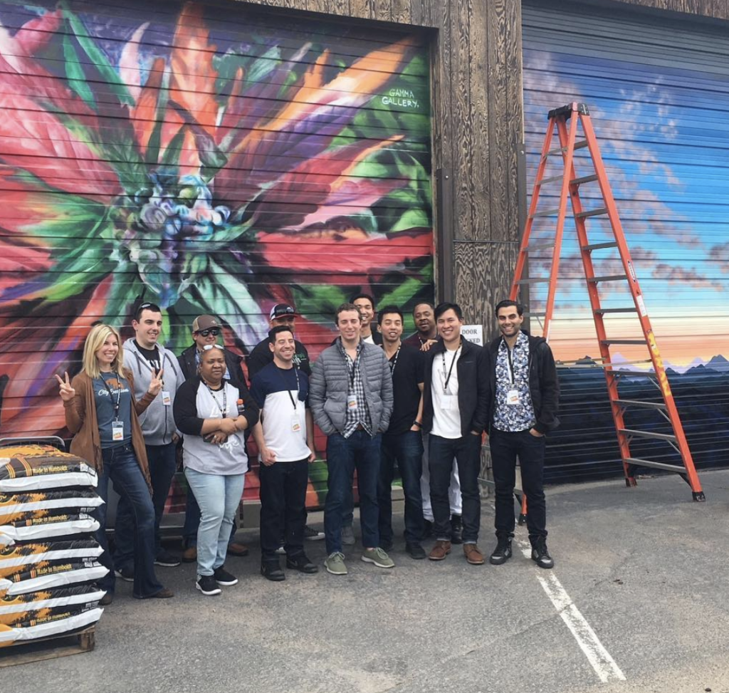 City Sessions Denver: Tour The Herbal Cure Grow With City Sessions!